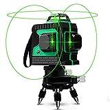 Kreuzlinienlaser 25M, Careslong 3 x 360 grner Laserpegel selbstausgleichende, grner Strahl 3D 12 Linien, IP 54 Selbstnivellierende Vertikale und Horizontale Linie (inklusive 2pcs Batterie)